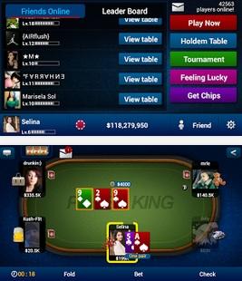 Texas Hold Em Poker Pro